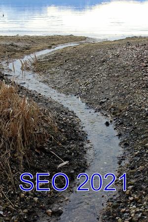 SEO продвижение в 2021. Практика и аналитика